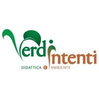 Verdi Intenti
