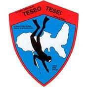 Teseo Tesei Coop S.D.