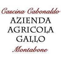 Azienda Agricola Gallo - Montabone