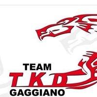 ASD TKD Gaggiano