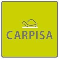 Carpisa Via Mazzini Verona