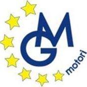M.G. Motori S.r.l.