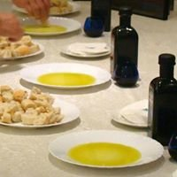 Olive Oil & Tourism in Spain - Oleícola San Francisco