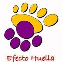 Efecto Huella