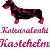 Koirasalonki Kastehelmi