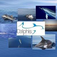 DELPHIS Aeolian Dolphin Center
