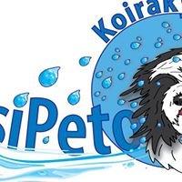 Koirakylpylä Vesipeto, Kiiminki