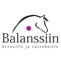 Balanssiin hevosille ja ratsukoille