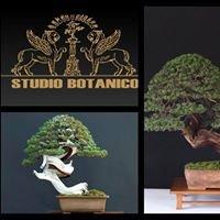 Studio Botanico Bonsai