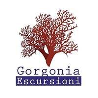 Gorgonia Escursioni