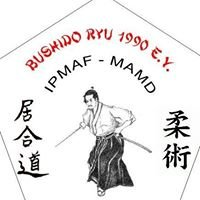 Kampfsportschule Bushido - Ryu 1990 e.V.