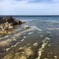 Atmosphereblu -Immersioni Naturalistiche e Archeologiche Amp Egadi-Levanzo