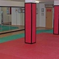 Wing Tai Kampfkunstschule Regensburg