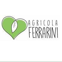 Azienda Agricola Ferrarini