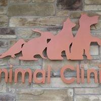 The Animal Clinic of Bayonne