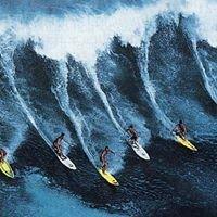 Surfing Designs by John Baum