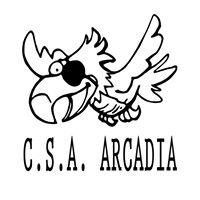 C.S.A Arcadia