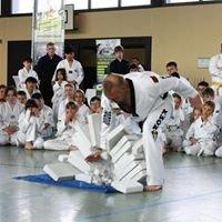 Kampfkunstschulen Budo-Leo
