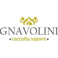 Gnavolini Raccolta Sapore