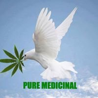 Pure Medicinal Fla