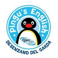 Pingu's English Desenzano