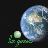 Lur Gozoa, Plataforma para una Ciudadanía Consciente