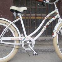 Kerékpár szaküzlet Kalocsa