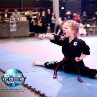 Kampfkunstschule Martial Arts Team Schiller