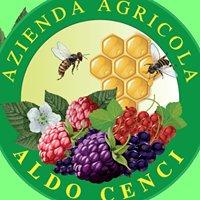 """Azienda Agricola """"Aldo Cenci"""""""