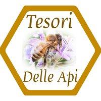 TESORI DELLE API