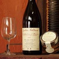 Cantina Wilma - Il Vino di Donna Tethi