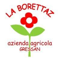 La Borettaz