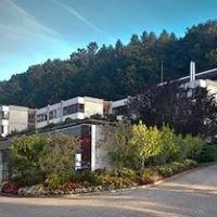 CFPS - Centre de formation professionnelle et sociale du Château de Seedorf