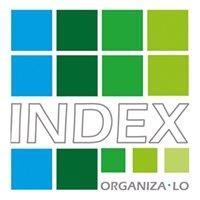 Index Organiza-lo