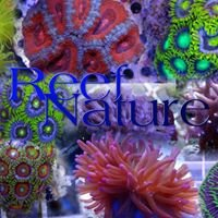 Reefnature