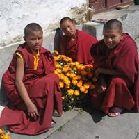 Supporting Ordained Sangha Fund
