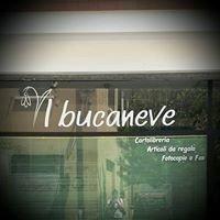 Il bucaneve - Lizzano in Belvedere