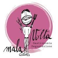 Malavolta