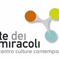 LA CORTE DEI MIRACOLI - Siena