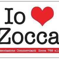 """Associazione Zocca 759 slm """"Io Amo Zocca"""""""