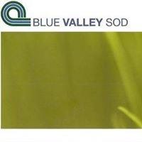 Blue Valley Sod & Landscape