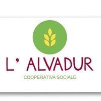 Cooperativa Sociale L'Alvadur