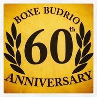 Boxe Budrio