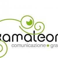 Kamaleont • Grafica e Pubblicità