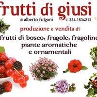 I frutti di Giusi di A. Fulgoni