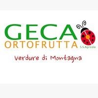 GECA Ortofrutta