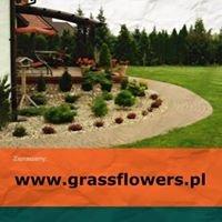 Grass & Flowers