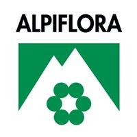 Alpiflora