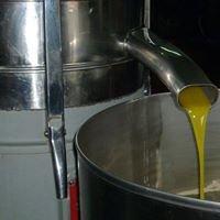 Olio della Lucania