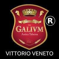 Galivm Vittorio Veneto